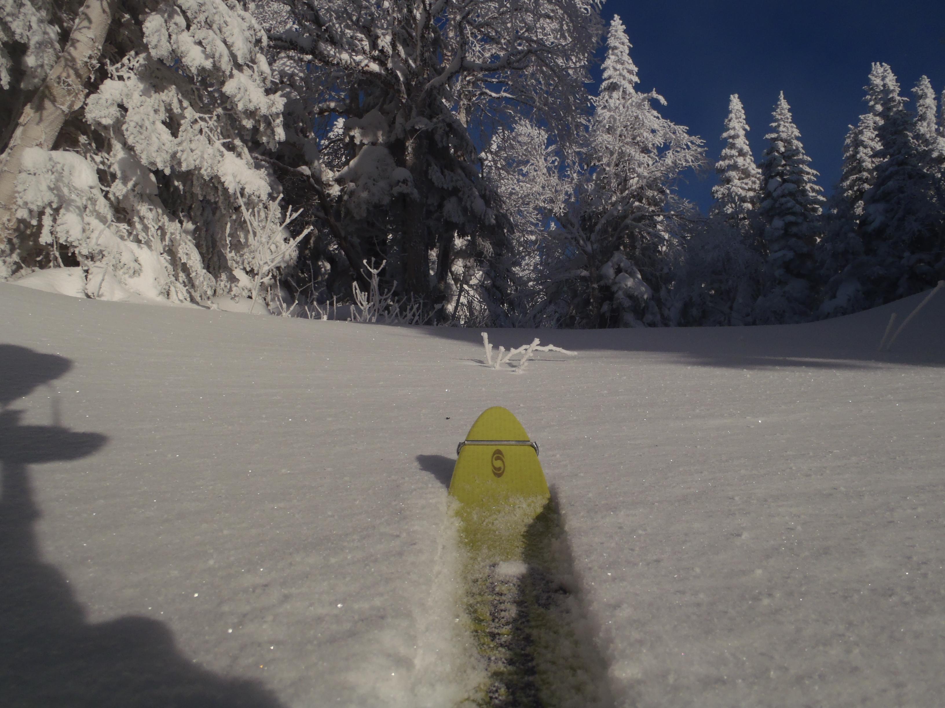 Ski nordique à la montagne du Diable