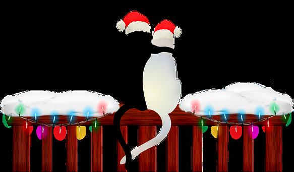 christmas-cats-3748891__340